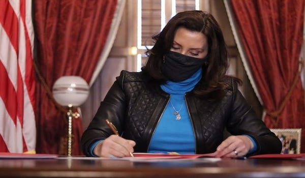 Governor Michigan vetoed bill